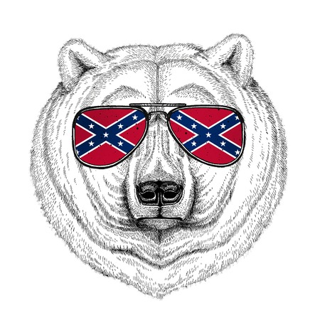 Polar bear wearing glasses with National flag of the Confederate States of America Usa flag glasses Wild animal