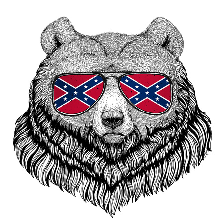 Grizzly bear Big wild bear wearing glasses with National flag of the Confederate States of America Usa flag glasses Wild animal for t-shirt, poster, badge, banner, emblem, logo Stock Photo
