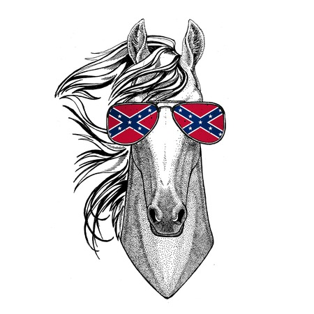 Horse, hoss, knight, steed, courser wearing glasses with National flag of the Confederate States of America Usa flag glasses Wild animal for t-shirt, poster, badge, banner, emblem, logo