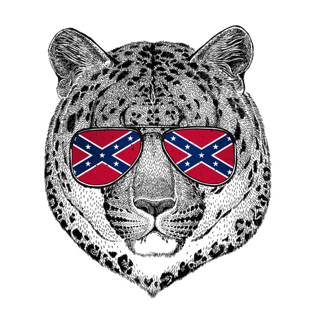 Wild cat Leopard Cat-o-mountain Panther wearing glasses with National flag of the Confederate States of America Usa flag glasses Wild animal for t-shirt, poster, badge, banner, emblem,