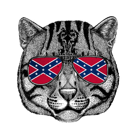 Wild cat Fishing cat wearing glasses with National flag of the Confederate States of America Usa flag glasses Wild animal for t-shirt, poster, badge, banner, emblem, logo Stock Photo
