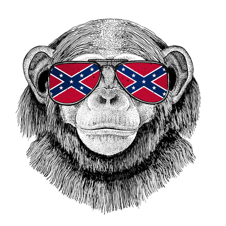 Chimpanzee Monkey wearing glasses with National flag of the Confederate States of America Usa flag glasses Wild animal for t-shirt, poster, badge, banner, emblem, logo Stock Photo
