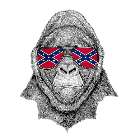 Gorilla, monkey, ape Frightful animal wearing glasses with National flag of the Confederate States of America Usa flag glasses Wild animal for t-shirt, poster, badge, banner, emblem, logo Stock Photo