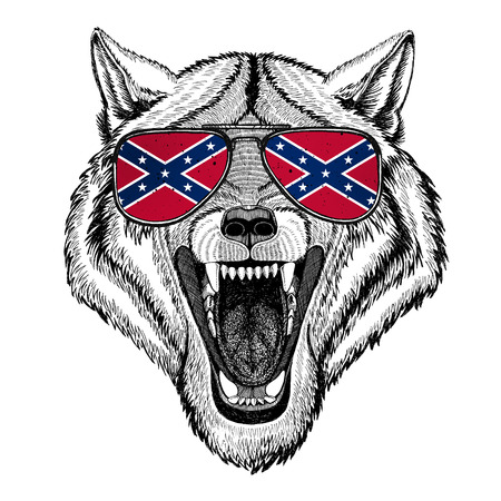Wolf Dog wearing glasses with National flag of the Confederate States of America Usa flag glasses Wild animal for t-shirt, poster, badge, banner, emblem,