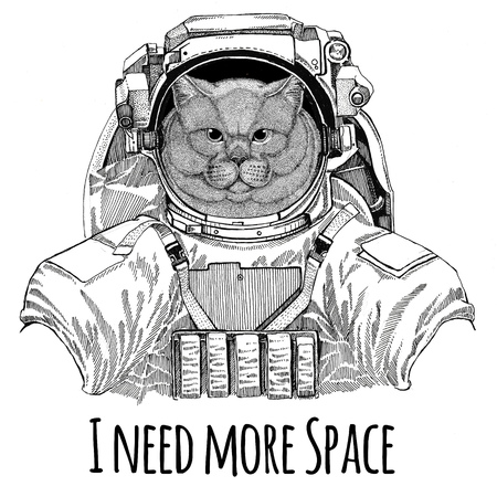 Brithish noble cat Male wearing space suit Wild animal astronaut Spaceman Galaxy exploration Hand drawn illustration for t-shirt