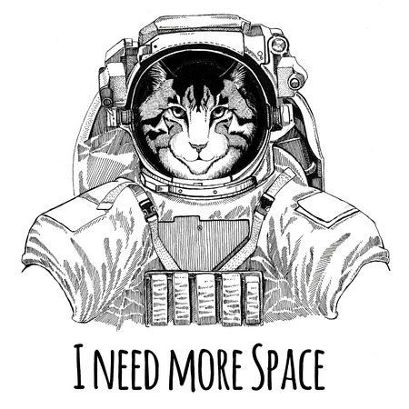 image of domestic cat wearing space suit wild animal astronaut spaceman galaxy exploration hand drawn illustration
