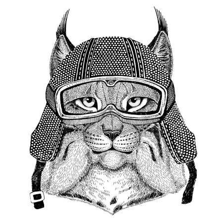 Wild cat Lynx Bobcat Trot wearing vintage motorcycle helmet Tattoo, badge, emblem, logo, patch, t-shirt