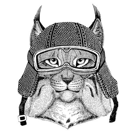 Wild cat Lynx Bobcat Trot wearing vintage motorcycle helmet Tattoo, badge, emblem, logo, patch, t-shirt Reklamní fotografie - 80708856