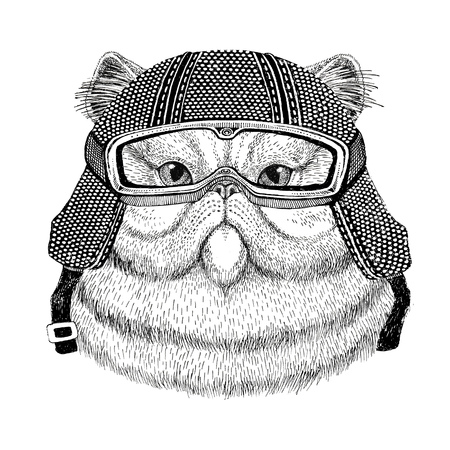 Portrait of fluffy persian cat wearing vintage motorcycle helmet Tattoo, badge, emblem, logo, patch, t-shirt