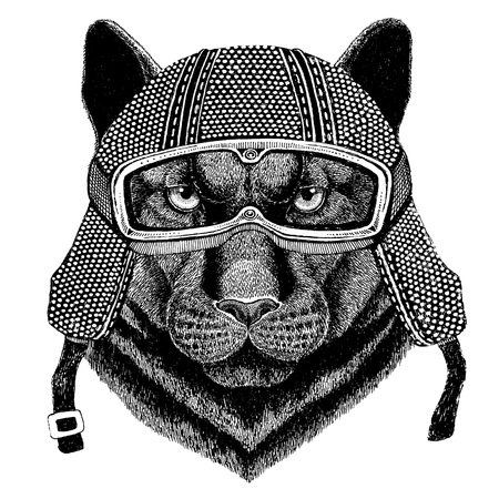 Panther Puma Cougar Wild cat wearing vintage motorcycle helmet Tattoo, badge, emblem, logo, patch, t-shirt