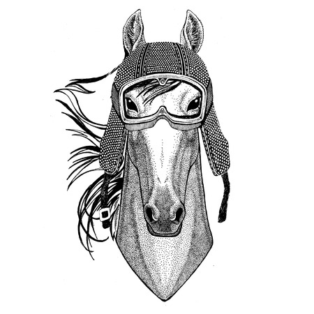 Horse, hoss, knight, steed, courser wearing vintage motorcycle helmet Tattoo, badge, emblem, logo, patch, t-shirt Stock Photo