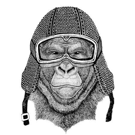 frightful: Gorilla, monkey, ape Frightful animal wearing vintage motorcycle helmet Tattoo, badge, emblem, logo, patch, t-shirt