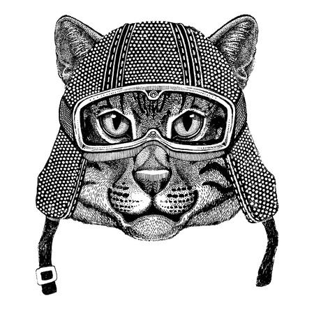 Wilder Katze Fischen Katze tragen Vintage Motorrad Helm Tattoo, Abzeichen, Emblem, Logo, Patch, T-Shirt Standard-Bild - 80708928