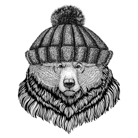 Grizzly bear Big wild bear wearing winter knitted hat
