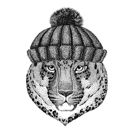 Wilde kat Leopard Cat-o-mountain Panther draagt winter gebreide muts Stockfoto