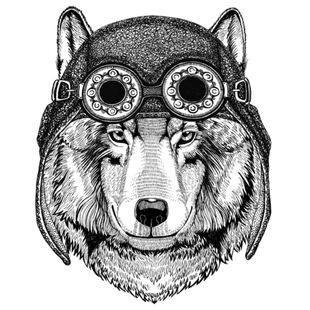 Wolf Dog wearing aviator hat Motorcycle hat with glasses for biker Illustration for motorcycle or aviator t-shirt with wild animal Banco de Imagens