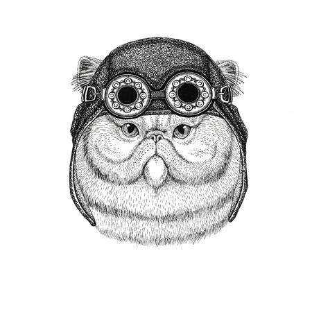 비행가 모자를 착용하는 솜 털 페르시아 고양이의 초상화 자전거 타는 사람을 위해 안경 오토바이 모자 오토바이 또는 야생 동물과 함께 비행사 - 셔츠