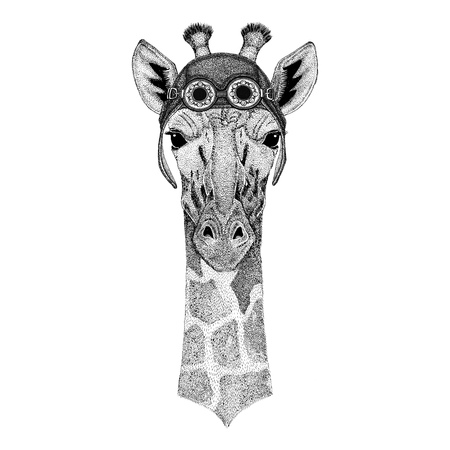 Camelopard, giraffe wearing aviator hat Motorcycle hat with glasses for biker Illustration for motorcycle or aviator t-shirt with wild animal Reklamní fotografie