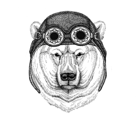 Polar bear wearing aviator hat Motorcycle hat with glasses for biker Illustration for motorcycle or aviator t-shirt with wild animal Banco de Imagens