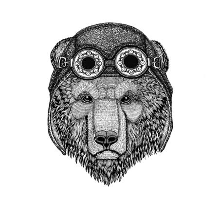 Brown bear Russian bear wearing aviator hat Motorcycle hat with glasses for biker Illustration for motorcycle or aviator t-shirt with wild animal Banco de Imagens