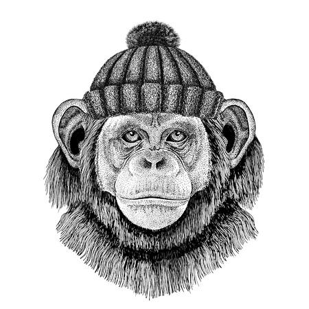 Chimpansee Monkey met winter gebreide hoed