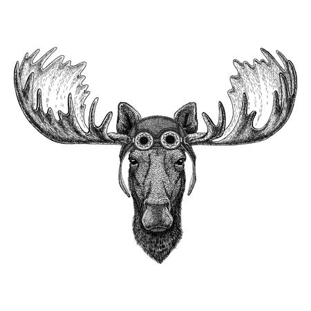 Moose, eland dragen vlieger hoed Motorfiets hoed met bril voor biker Illustratie voor motorfiets of vlieger t-shirt met wilde dieren