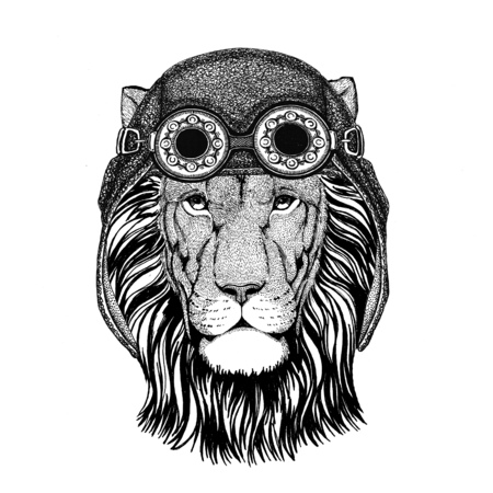 Wild Lion wearing aviator hat Motorcycle hat with glasses for biker Illustration for motorcycle or aviator t-shirt with wild animal