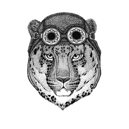 Wild Cat Leopard Cat-o-Mountain Panther portant un chapeau d'aviateur Casque de moto avec des lunettes pour motard Illustration pour moto ou t-shirt d'aviateur avec animal sauvage Banque d'images - 80713744