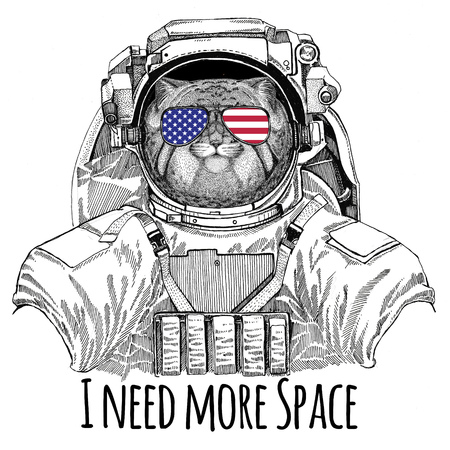 Usa flag glasses American flag United states flag Wild cat Manul wearing space suit Wild animal astronaut Spaceman Galaxy exploration Hand drawn illustration for t-shirt