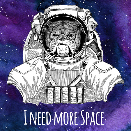 Animal astronaut Bulldog wearing space suit Galaxy space background with stars and nebula Watercolor galaxy background 版權商用圖片