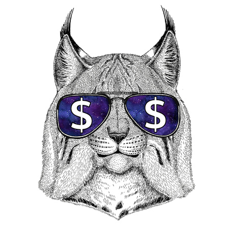 Wild cat Lynx Bobcat Trot wearing glasses with dollar sign Illustration with wild animal for t-shirt, tattoo sketch, patch