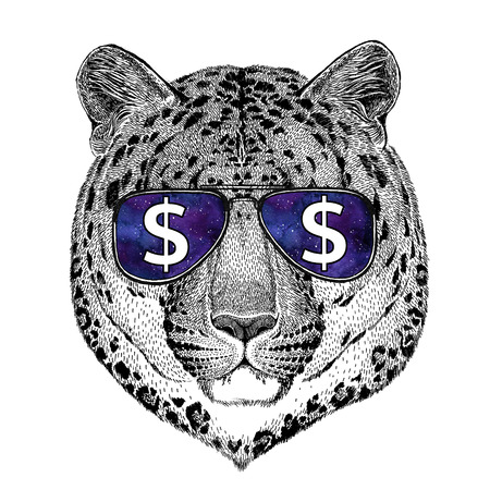 Wild cat Leopard Cat-o-mountain Panther wearing glasses with dollar sign Illustration with wild animal for t-shirt, tattoo sketch, patch Stock Photo