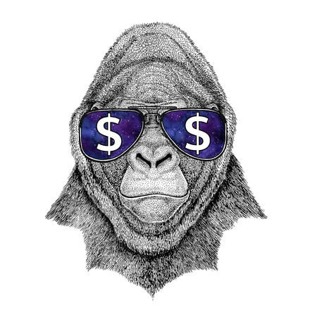 Gorilla, monkey, ape Frightful animal wearing glasses with dollar sign Illustration with wild animal for t-shirt, tattoo sketch, patch