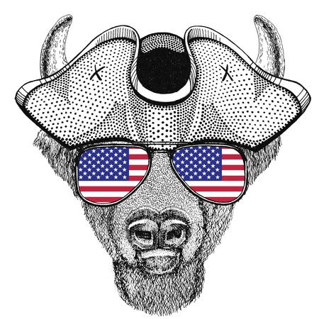 Buffalo, bison,ox, bull animal wearing pirate hat Cocked hat, tricorn Sailor, seaman, mariner, or seafarer