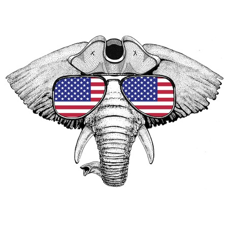 African or indian Elephant wearing pirate hat Cocked hat, tricorn Sailor, seaman, mariner, or seafarer