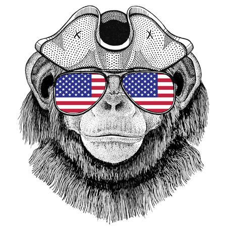 Chimpansee Aap draagt piratenhoed Geplooide hoed, tricorn Zeeman, zeeman, zeeman of zeevaarder