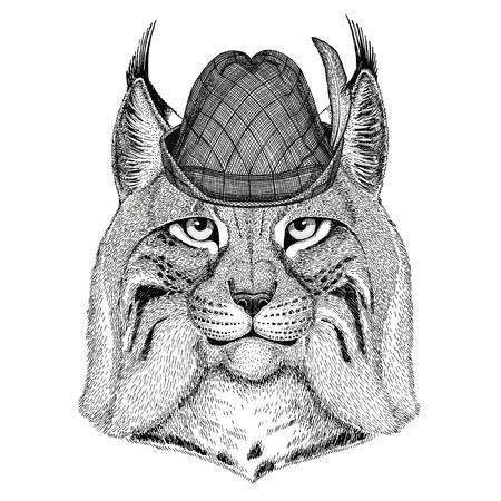 Gatto selvatico Lynx Bobcat Trot Wildlife animale che indossa cappello tiroletto Oktoberfest autunno festival Birra fest illustrazione Birra birra festival Archivio Fotografico - 80835924