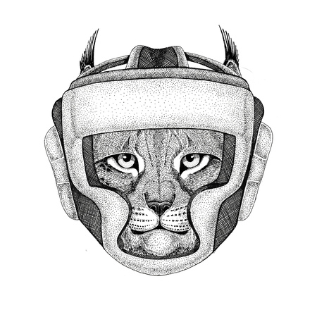 Wild cat Lynx Bobcat Trot Wild boxer Boxing animal Sport fitness illutration Wild animal wearing boxer helmet Boxing protection Image for t-shirt, poster, banner