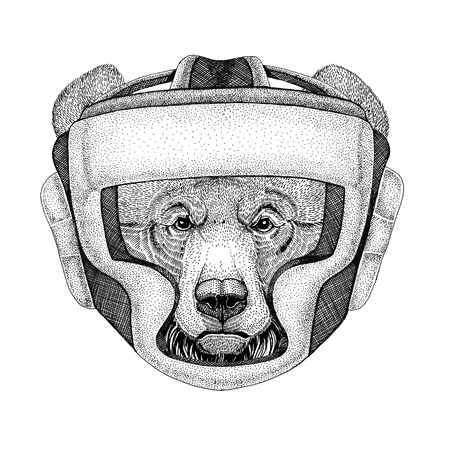 Grizzly bear Big wild bear Wild boxer Boxing animal Sport fitness illutration Wild animal wearing boxer helmet Boxing protection Image for t-shirt, poster, banner Stock Photo