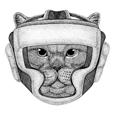 Brithish noble cat Male Wild boxer Boxing animal Sport fitness illutration Wild animal wearing boxer helmet Boxing protection Image for t-shirt, poster, banner