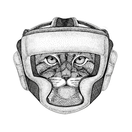 Wild cat Manul Wild boxer Boxing animal Sport fitness illutration Wild animal wearing boxer helmet Boxing protection Image for t-shirt, poster, banner Imagens