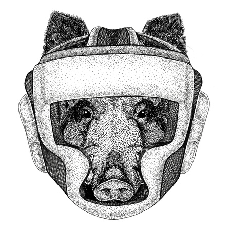 Aper, boar, hog, hog, wild boar Wild boxer Boxing animal Sport fitness illutration Wild animal wearing boxer helmet Boxing protection Image for t-shirt, poster, banner