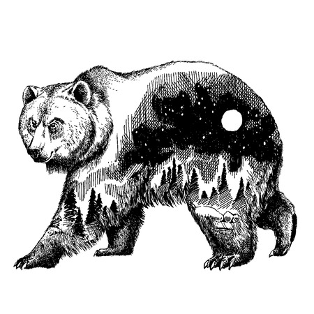 Vector bear double exposure tattoo art. Canada. Mountains, compass. Brown bear Bear grizzly silhouette t-shirt design Tourism symbol, adventure, great outdoor. Фото со стока - 80901167