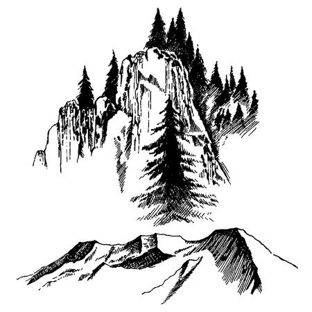 Wild nature Mountain Wood Trees North landscape Ilustracja