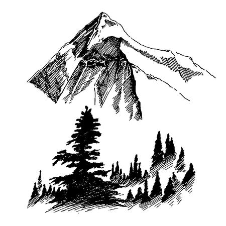 야생의 자연 산 나무 나무 북쪽 풍경 일러스트