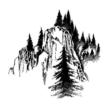 Wild nature Mountain Wood Trees North landscape Illustration