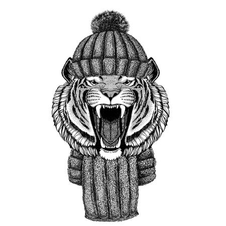 ニットの帽子とスカーフを身に着けている野生のトラ