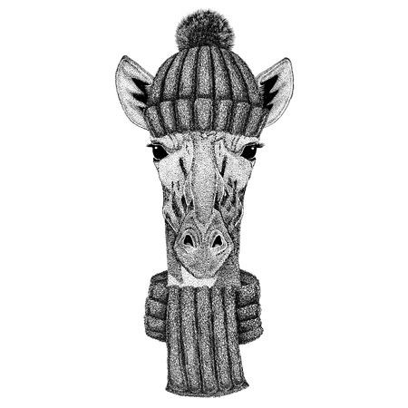 Camelopard, giraffe met gebreide muts en sjaal Stockfoto