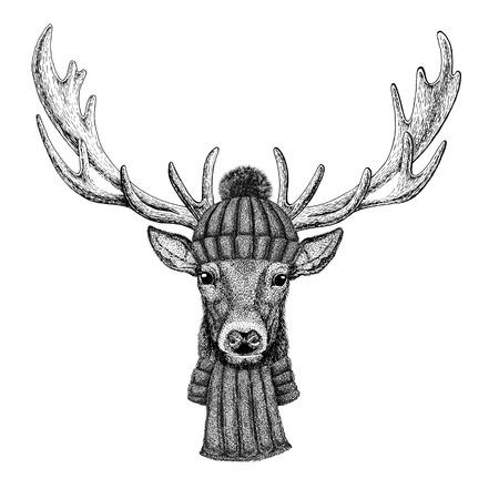 사슴 니트 모자와 스카프 착용 스톡 콘텐츠
