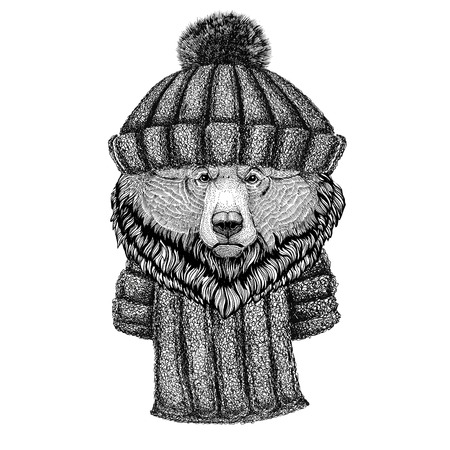 Grizzly bear Big wild bear wearing knitted hat and scarf